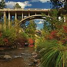 Historic Highway Bridge - Susan River by James Eddy