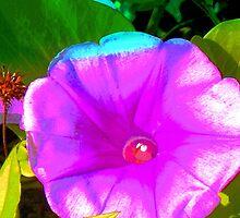 Cupped dewdrops by ♥⊱ B. Randi Bailey