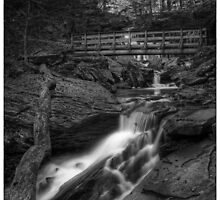 Below R.B. Ricketts Falls October 2011 by Aaron Campbell