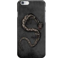 Dragon 24 iPhone Case/Skin