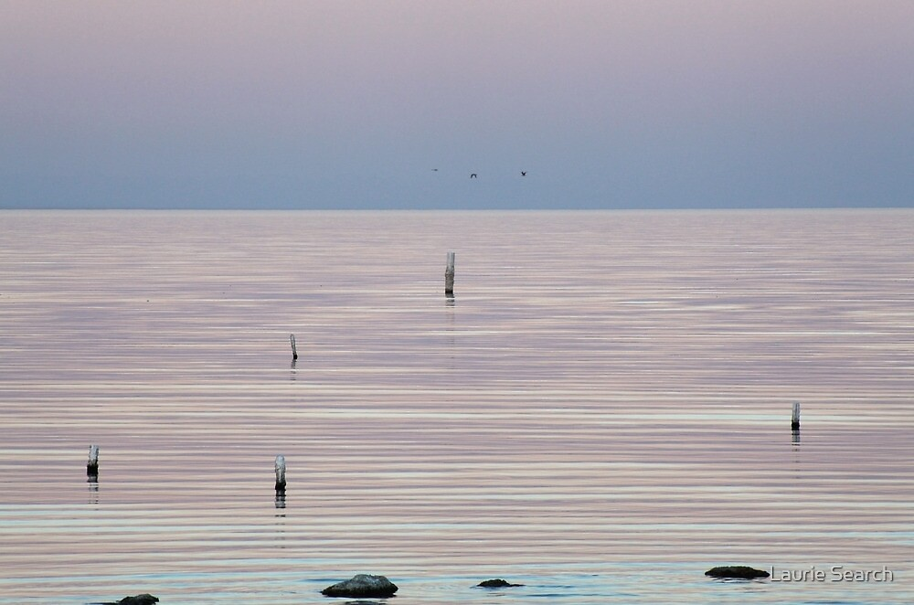 The Silence Speaks by Laurie Search