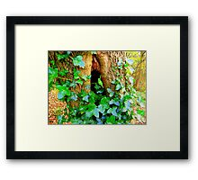 Holy Tree  Framed Print