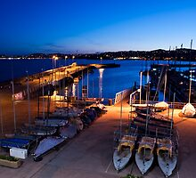 Torbay at Night by Lissywitch