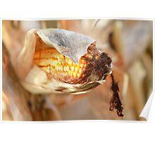 im torn between the corn Poster