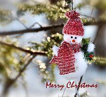 Snowman by Elaine  Manley