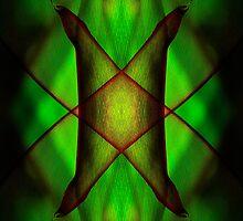 Mirror montage of a leaf by Celeste Mookherjee
