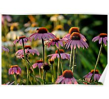 flowers be my buds Poster