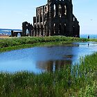 Whitby Abbey by Kate Fortune