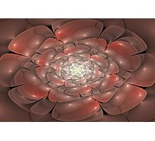 3D Blossoms - Pearl and Coral Photographic Print