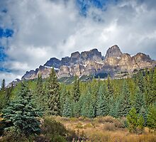 Castle Mountain, Alberta by Lynn Armstrong