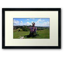 Glastonbury Thorn & Tor Framed Print