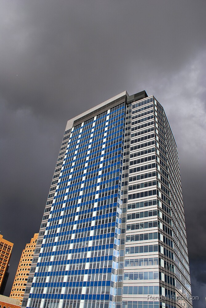 Bellevue Washington by Randall Robinson