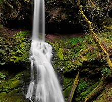 Upper Trestle Falls by 11th-Dimension