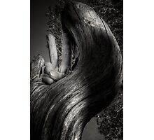 Peaceful Slither Photographic Print