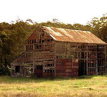 Durras NSW by Elisabeth Dubois