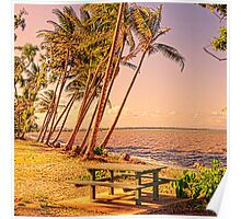 Coconut palms on beach with picnic table Poster