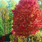 colorful fall by ANNABEL   S. ALENTON