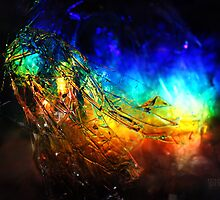 Rainbolic - Experimental Prism Photograph #14 by jeffjag