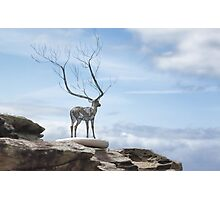 Sculptures by the Sea - The Deer Photographic Print