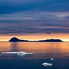 Svalbard - The Norwegian Arctic by David Campbell