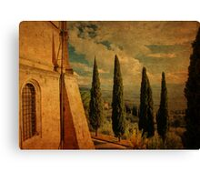 Cypress Family-Pienza, Tuscany Canvas Print