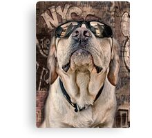 yeah man . . . this is really high Canvas Print