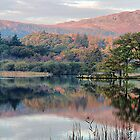 Early morning,Rydal Water  by Irene  Burdell