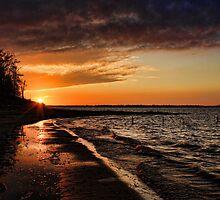 Lakeside At Sundown by Carolyn  Fletcher