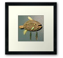 Key chain fish # 7 (SOLD) Framed Print