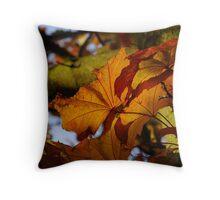 Pretty Autumn Colours Throw Pillow