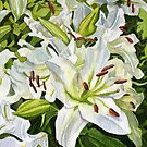 White Lillies by marksatchwillart