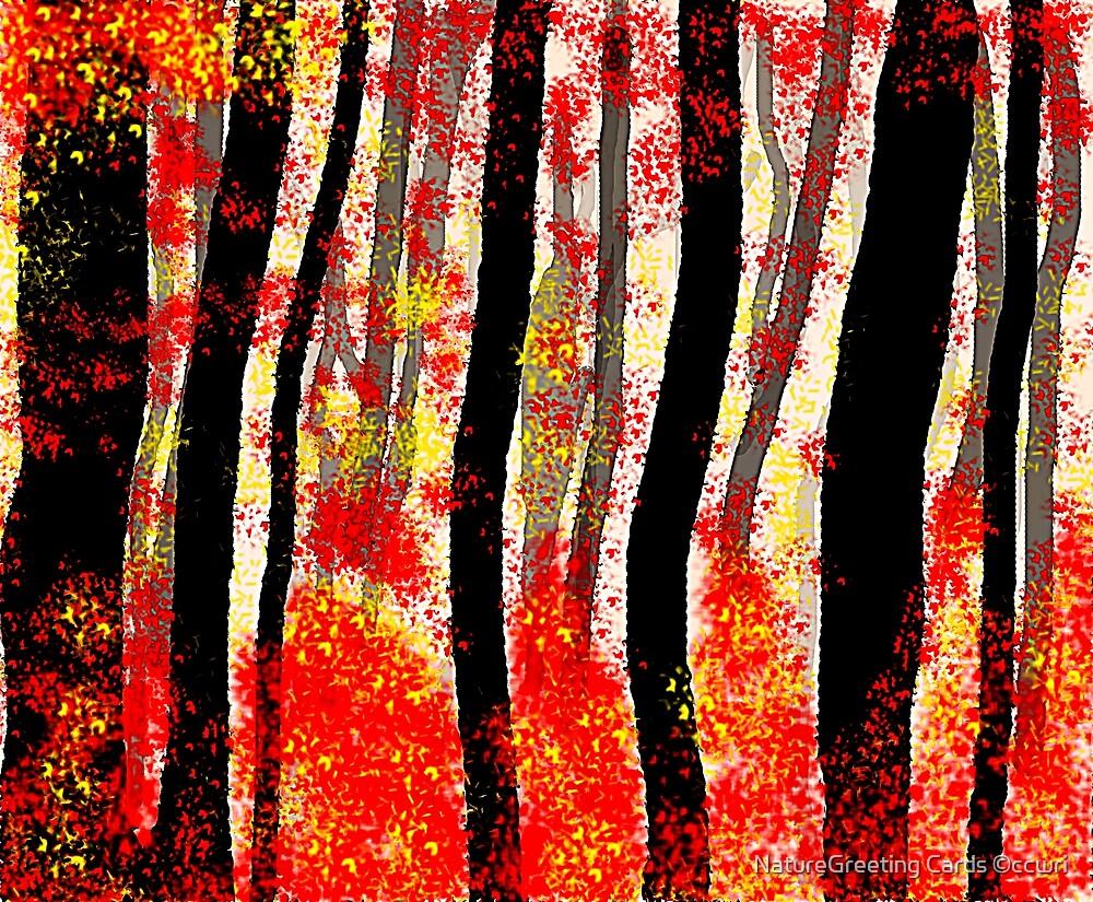 Autumn by NatureGreeting Cards ©ccwri