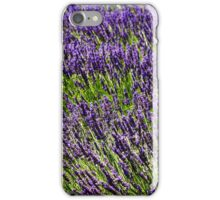 Lavender Fields. Photographed in Provence, France  iPhone Case/Skin