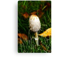 Shaggy Mane Canvas Print