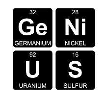 Ge Ni U S - Genius - Periodic Table - Chemistry Photographic Print