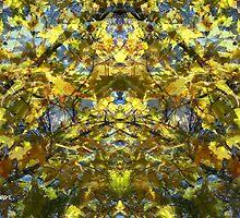Golden Rorschach by Seth  Weaver