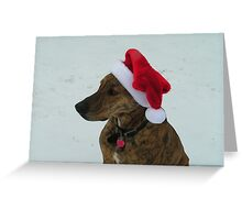 I HATE this hat! Greeting Card