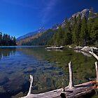 String Lake by Rick Louie