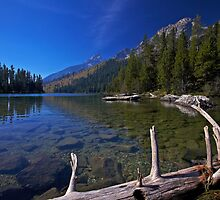 String Lake by Rick Louie