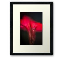 colorful abstract of a red flower  Framed Print