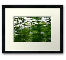Lush green trees with motion blur  Framed Print