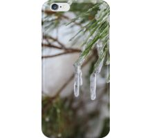 Close-up of pine leaves in snow. Photographed at Odem Forest, Golan Heights, Israel  iPhone Case/Skin