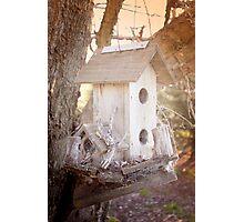 Birds House Photographic Print