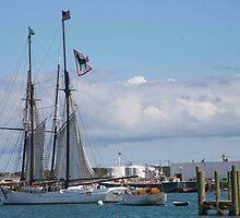 Black Dog Tall Ship by phil decocco