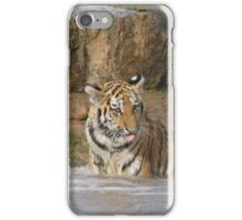 Tiger, Mother and Cub iPhone Case/Skin