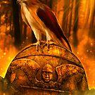 Hawk Spirit by Kerri Ann Crau