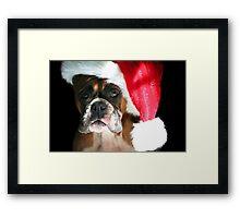 Christmas Boxer dog Framed Print