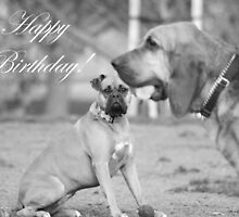 Happy Birthday Boxer and Bloodhound by ritmoboxers