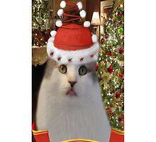 ✿♥‿♥✿   Bah Humbug Cat IPhone Case  ✿♥‿♥✿    by ✿✿ Bonita ✿✿ ђєℓℓσ