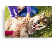 Siberian Husky dog Funny Portrait  Canvas Print